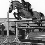 Jumping Clinic on Lord Pinkerton